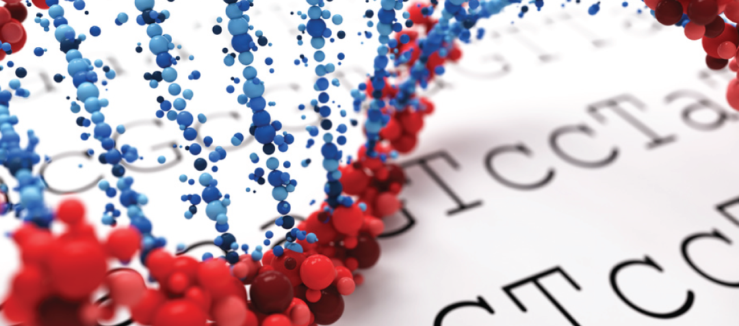 Confirmation of NGS for False-negative Variants Using XNA Technology