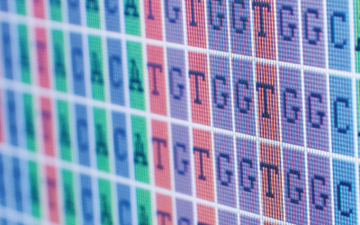 Cancer Diagnostics: Targeted Gene Panels for Next Generation of Sequencing